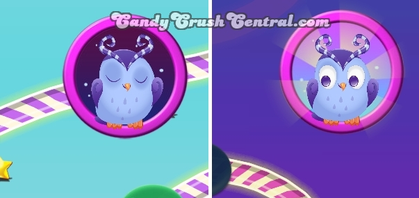 Candy-crush-odus-owl